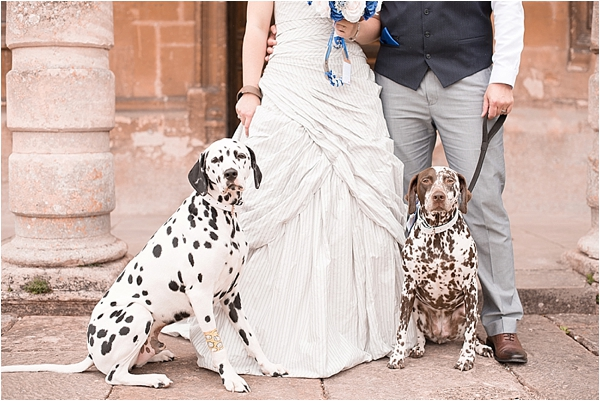 A bride and groom with their dogs outside lodge park