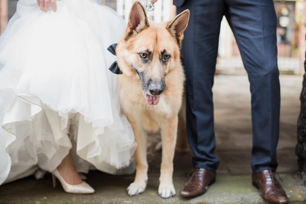 Amersham Luxury Wedding Photographer