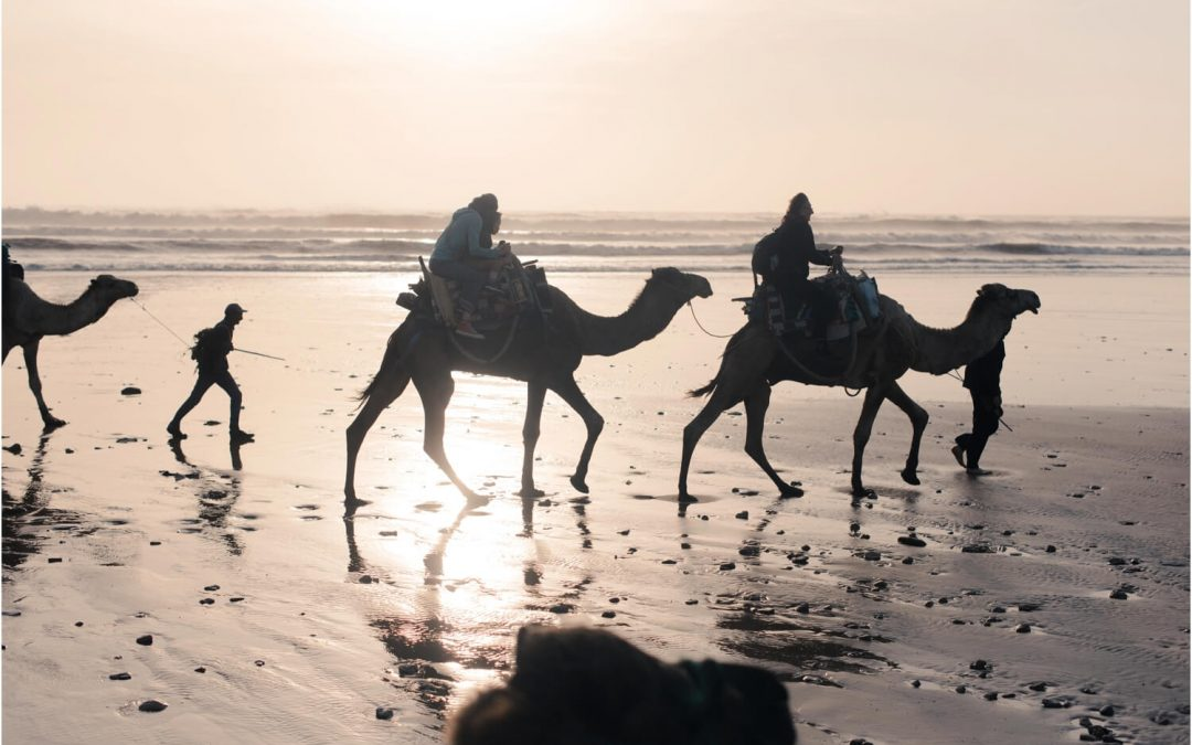 Our family holiday to Morocco